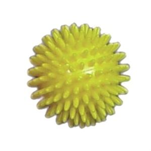 Изображение Мяч для фитнеса L 0108