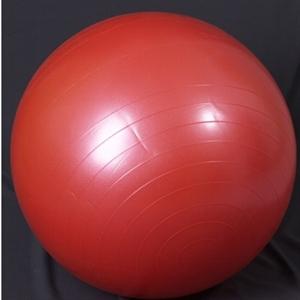 Изображение Мяч гимнастический для фитнеса L 0165b с насосом
